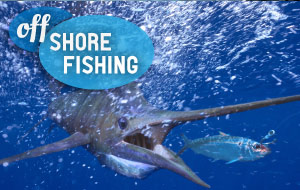 Offshore Fishing Vacations