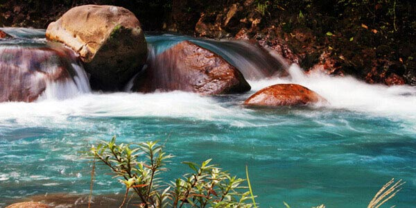 An Insiders Costa Rica