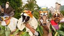 Indigenous Traditions – Bruncas' 'The Dance of the Devils'