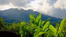 Guanacaste National Park