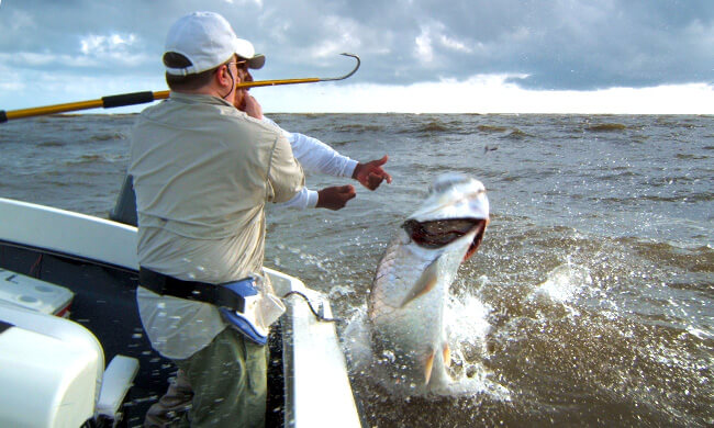 Tarpon fishing caribbean coast of costa rica day tour for Costa rica fishing packages