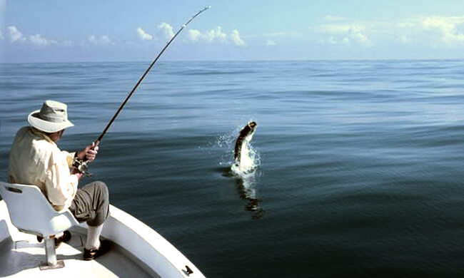 Tarpon fishing vacation tarpon of tortuguero for Costa rica fishing packages