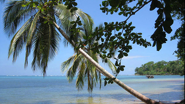 Guide To Puerto Viejo Caribbean Haven Of Costa Rica