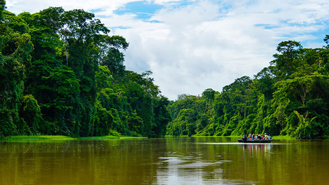 Guide To Tortuguero Costa Rica Discover Abudant Wildlife