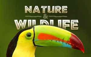 Costa Rica nature travel