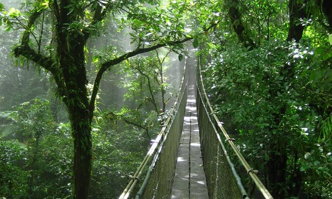 Costa Rica Nature Photography Tours