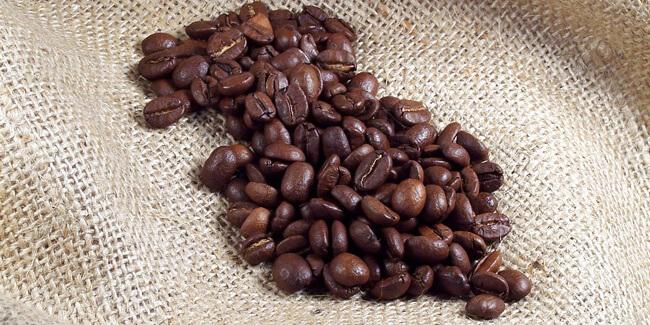 Monteverde Coffee & Chocolate Tour