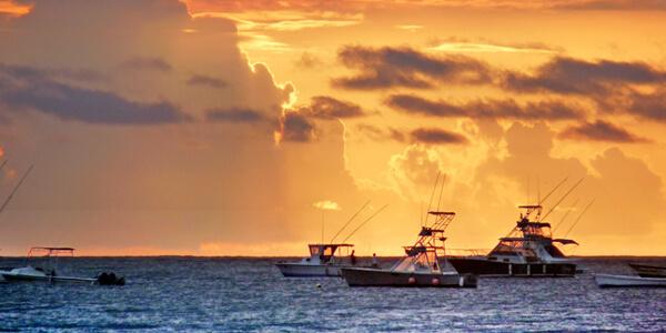 Tamarindo Sportfishing